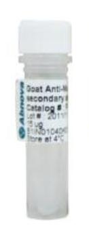 CD62L monoclonal antibody, clone IVA94
