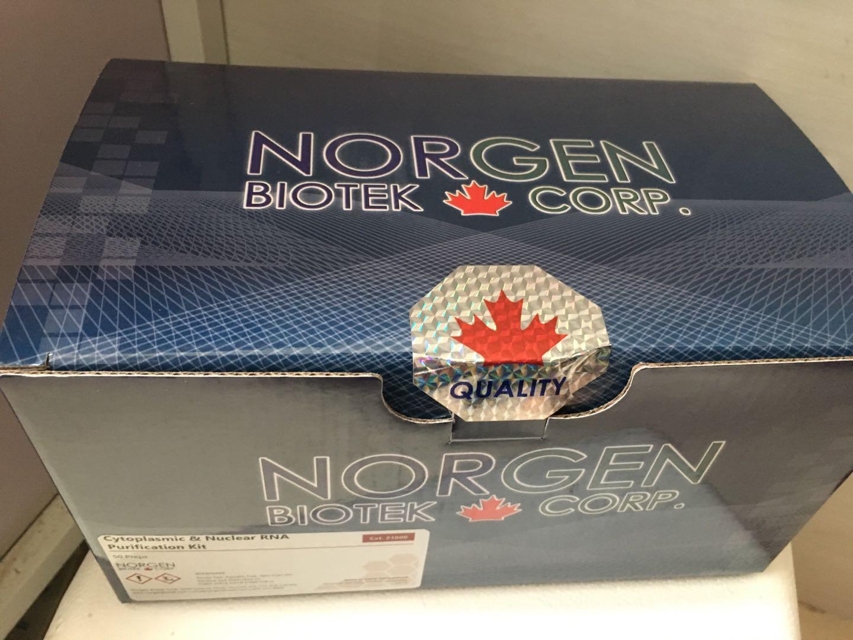 青霉菌终点PCR试剂盒
